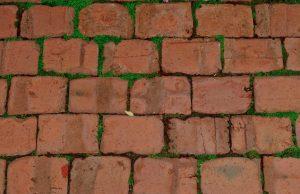 Brick Paver Repair Orlando